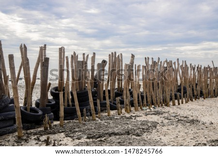 Bamboo Breakwaters for coastal protection.  marine structures that reduce water forces offshore before they reach land thus preventing erosion. #1478245766