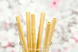 Bamboo drinking straws. Eco friendly biodegradable bamboo straws in a drinking glass, longdrink glass, on asia cherry tree background.