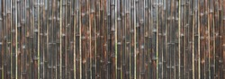 Bamboo fence textured background in vertical lines