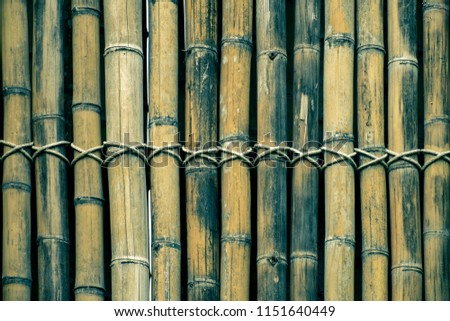Bamboo fence wall texture background. #1151640449