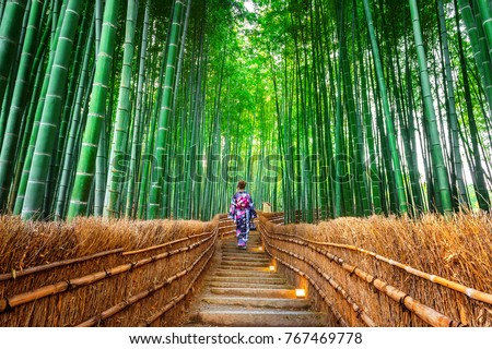 Bamboo Forest. Asian woman wearing japanese traditional kimono at Bamboo Forest in Kyoto, Japan. Foto stock ©