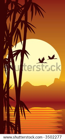 Bamboo forest, water and sunset