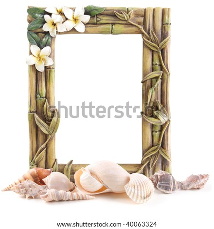 Bamboo frame and sea shells isolated on white