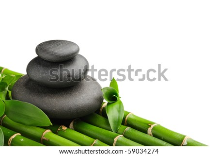 Bamboo grove and zen stones on the white background