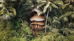 Bamboo jungle house in Bali, Indonesia