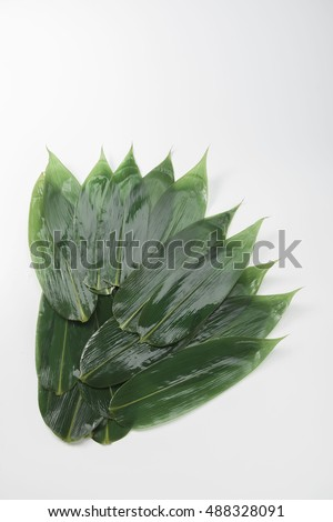 Bamboo leaves #488328091