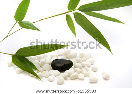 Bamboo leaves and zen stones isolated on white background