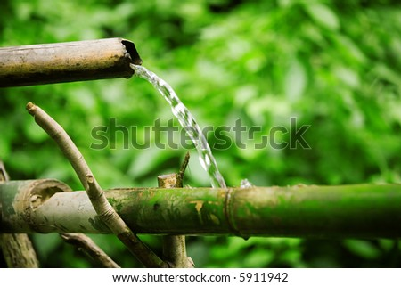 Bamboo lengths of pipe set up to direct water