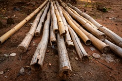 Bamboo poles are used for home construction in Ghana, West Africa.