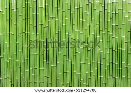 Bamboo raft #611294780