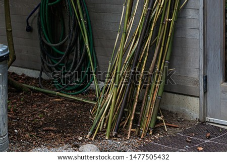 bamboo stakes leaning up against building with hose #1477505432