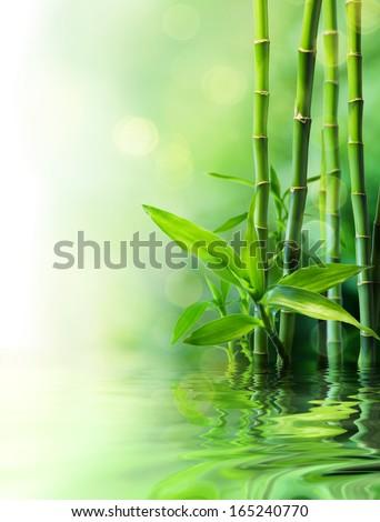 bamboo stalks on water - blurs  #165240770