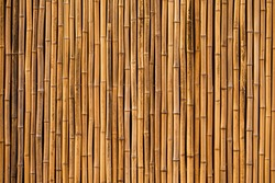 bamboo texture background for interior or exterior design.