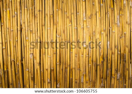 Bamboo texture good for background