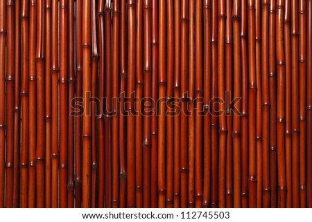 Bamboo wall - stock photo