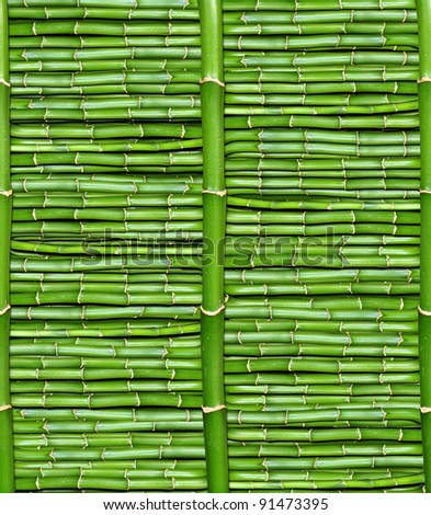 bamboo - wallpaper