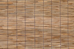 Bamboo wood blind window seamless background and texture