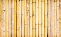 Bamboo wood texture fence wall abstract nature background