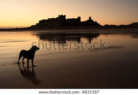 Bamburgh castle the north Northumberland coastline England