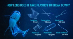 Ban plastic pollution on sea. Infographics. Period breaking plastic in water