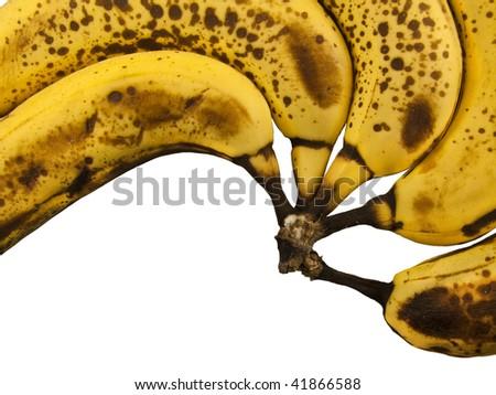 Bananas in a row shot close up - stock photo