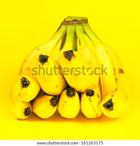 antimicrobial activity of banana musa sapientum