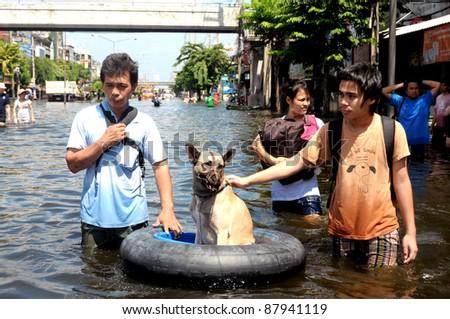BANGKOK - NOV 2: Citizens rescue a dog from the flood of November 2, 2011 in Bangkok, Thailand.