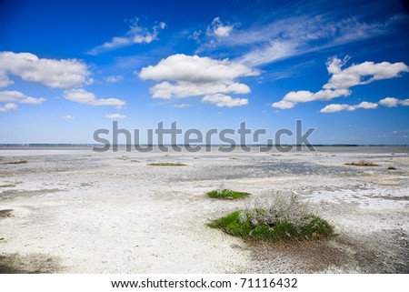 bank of salt lake with dead salinity plant