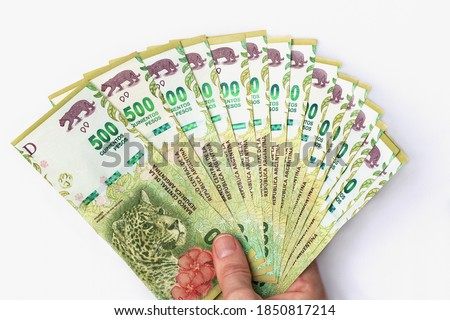 Banknotes of 500 Argentine pesos arranged in the shape of a fan held from its lower edge in an offering attitude by a female hand with Caucasian skin and short natural nails on a white background.  Foto stock ©