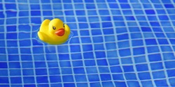 Banner. A yellow rubber duck is swimming in a blue pool.