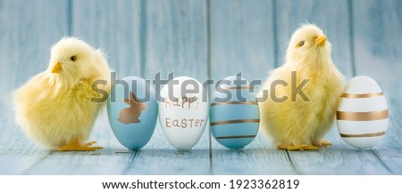 Banner. Blue, yellow, white eggs and yellow chicks on a blue wooden background. The minimal concept. An Easter card with a copy of the place for the text.