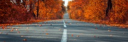 Banner 3:1. Empty asphalt road in autumn fall forest. Autumnal background. Selective focus