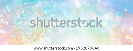 Banner flower of life in an abundant field of sparkling rainbow colored light Stock photo ©