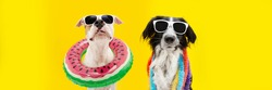 Banner funny dogs summer. American Staffordshire  inside an ring inflatable and a border collie wearing a colorful garland. Isolated on yellow background