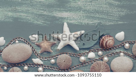 Banner Natural wooden retro sea shell stone background. Decorative composition flat lay
