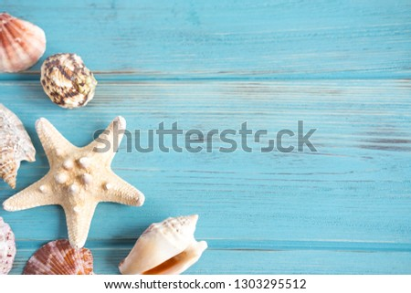 Banner traveler. Frame for the text of a sailor suit with starfish and seashells. Photo of seashells