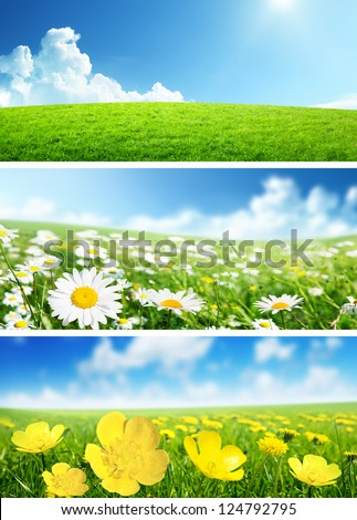 Banners Of Spring Flowers And Grass