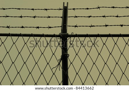 Barb wire and fence