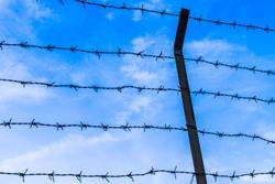Barb wire & Blue sky