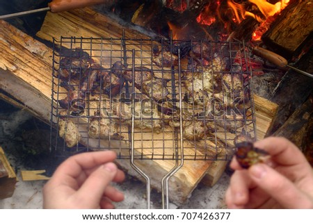 Shutterstock Barbecue garden party (cookout, family outing). Pieces of kebab roasted in grill on coals that are isolated logs (to smoke)