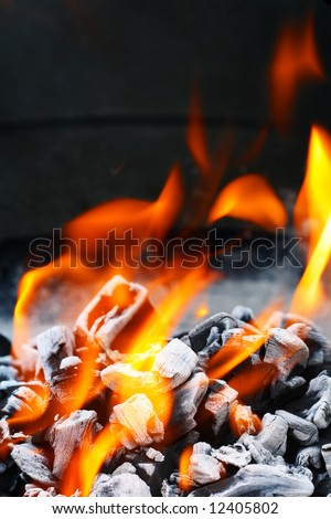 Barbecue Grill flame fire charcoal BBQ - stock photo