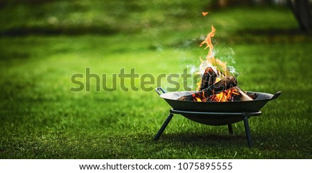 Barbecue grill with fire on nature - Shutterstock ID 1075895555