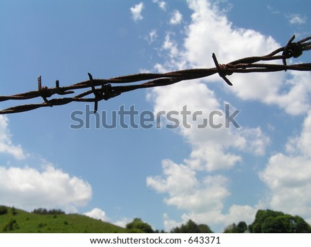 barbed wire against field and blue sky. Shallow depth of field.