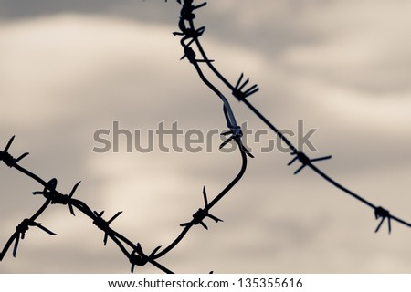Barbed wire against moody sky. Toned shot, closeup.