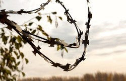 Barbed wire against the gloomy sky. The concept of restriction of freedom, social distancing, loneliness