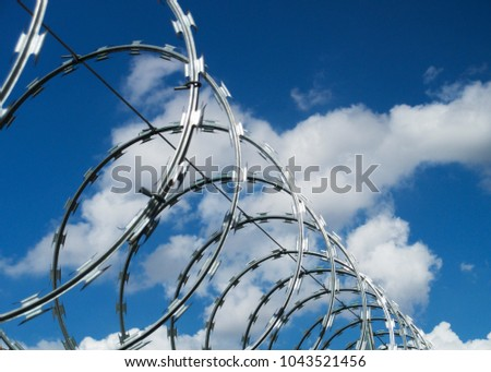 Barbed wire and concertina wire  #1043521456