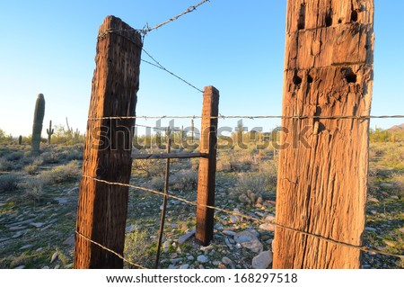 Barbed wire and fence posts