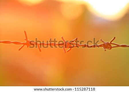 Barbed wire at sunset.