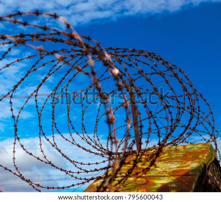 Barbed wire. Barbed wire on blue sky background with white clouds. Wire boom. Military conflict . Syria #795600043