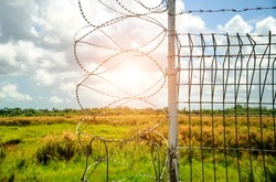Barbed wire barrier in restricted area, barbed bottom view and morning sun, Barbed wire fence and wire mesh with sky, Fence with barbed wire against the blue sky.